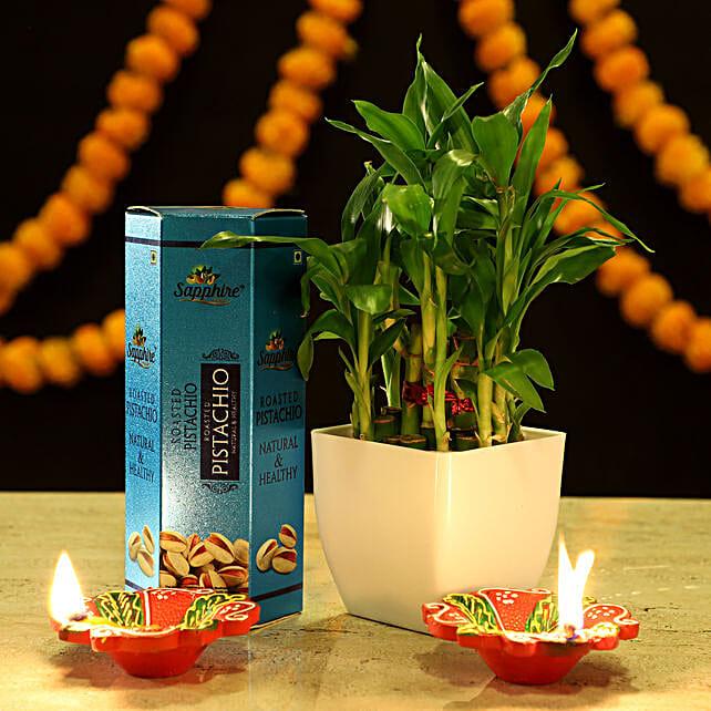 2 Layer Bamboo Festive Combo: Spiritual Plant