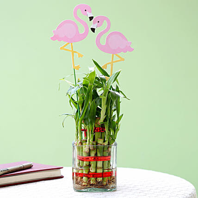 2 Layer Bamboo Plant With Flamingo: Spiritual Plant