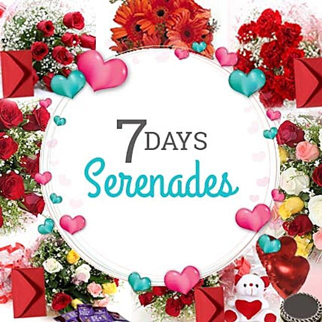 7 Days Valentine Week full of Love: Roses And Teddies