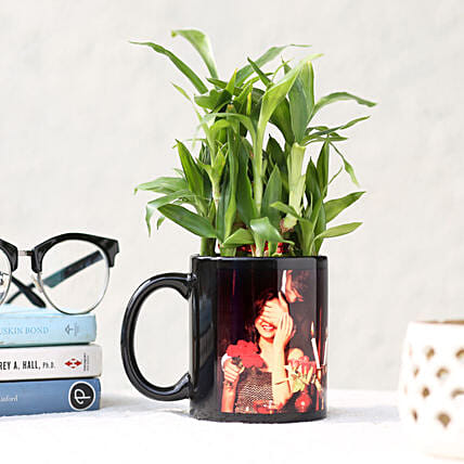 Bamboo Plant in Black Picture Mug: Personalised Gifts Combos