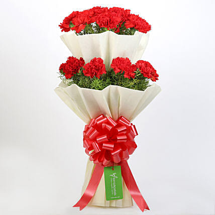 Beautiful 2 Layered Red Carnations Bouquet: Send Carnations