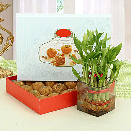 Besan Laddoo with Luck: Bamboo Plants