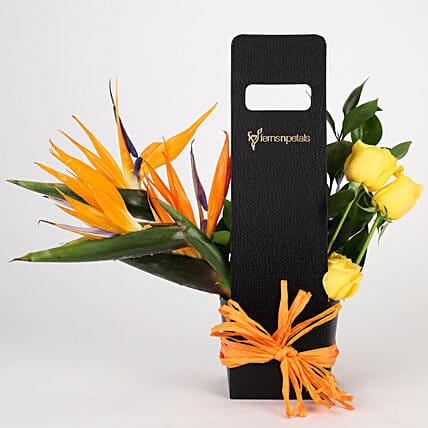 Birds of Paradise & Roses in Black Sleeve: Carnations