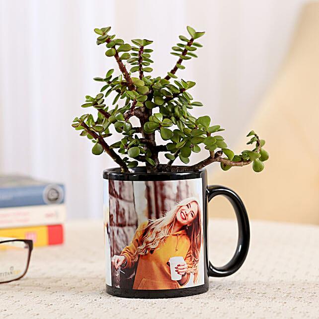 Black Personalised Mug With Jade Plant: Outdoor Plants