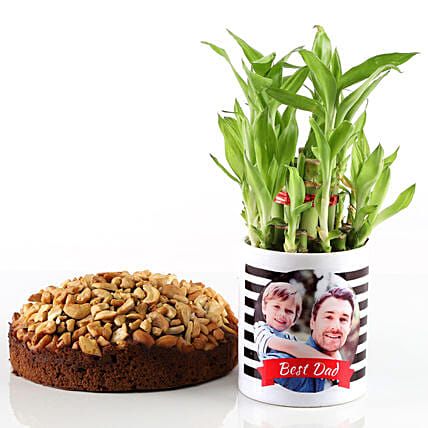 Dry Cake & Bamboo Plant In Photo Mug For Dad: Personalised Pot plants