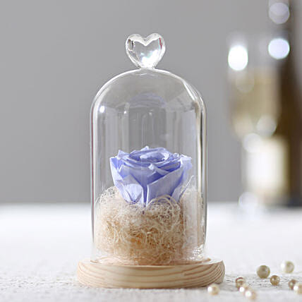 Forever Lavender Blue Rose In Glass Dome: Forever Roses