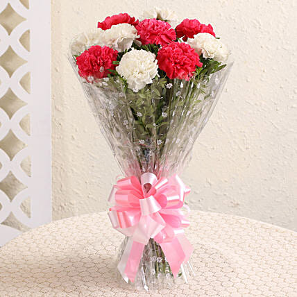 Graceful Pink & White Carnations: Carnations