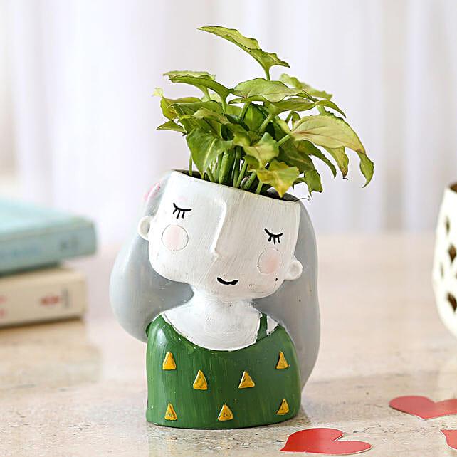 Green Syngonium Plant In Raisin Pot: Indoor Plants