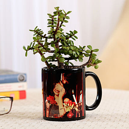 Jade Plant In Black Personalised Mug: Plants for birthday