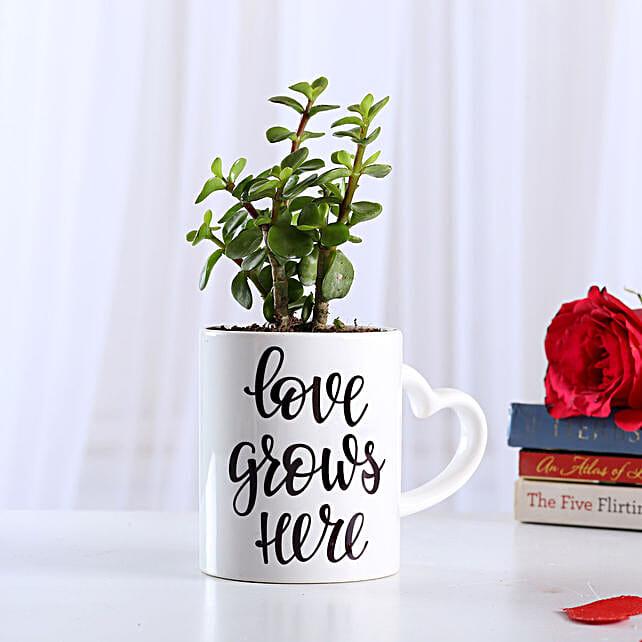 Jade Plant In Love Special Ceramic Mug: Succulents and Cactus Plants