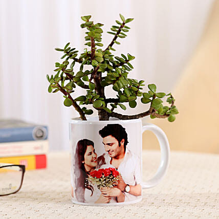 Jade Plant In Personalised Mug-White: Plant Combos