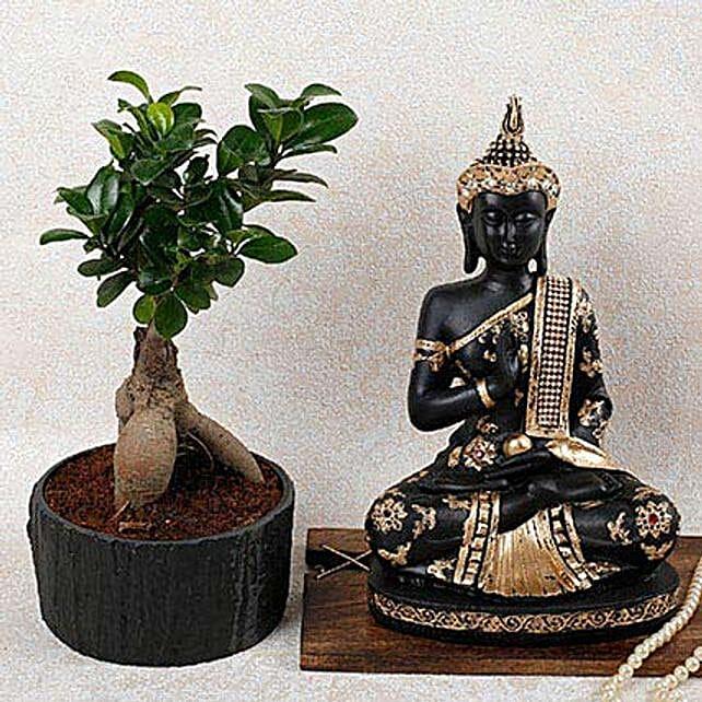 Lord Buddha N Ficus Microcarpa Bonsai Plant: Plant Combos