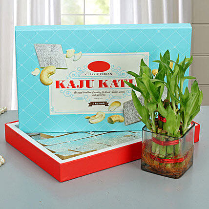 Lucky Wishes with Kaju Barfi: