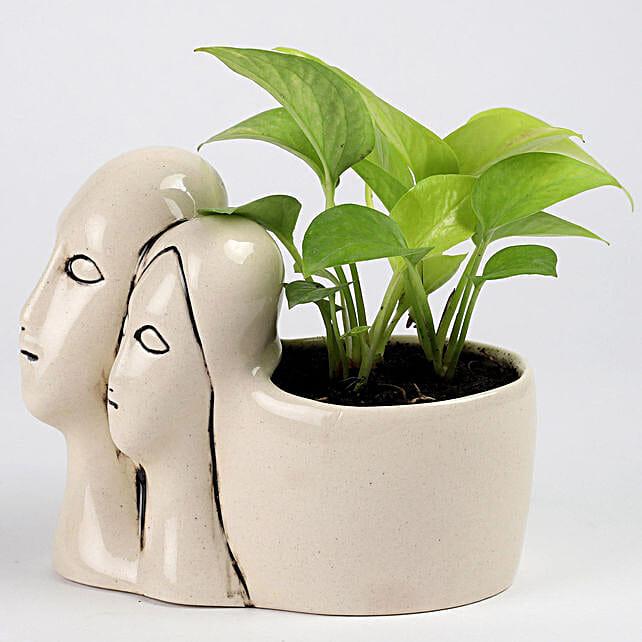 Money Plant in Couple Pot: Outdoor Plants