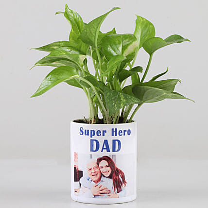 Money Plant In Personalised Super Hero Dad Mug: Air Purifying Plants
