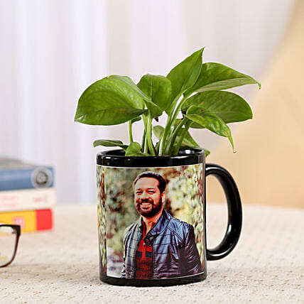 Money Plant In Stylish Personalised Mug: Best Outdoor Plant