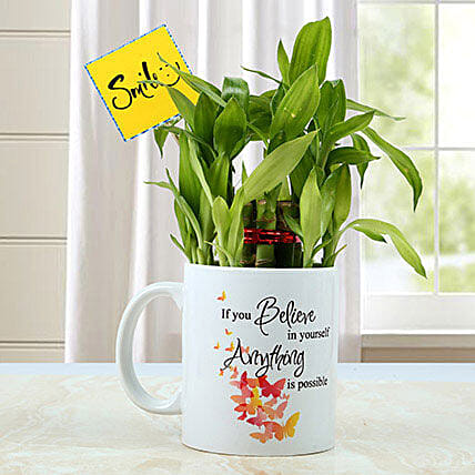 Mug with Bamboo Plant: Office Desk Plants