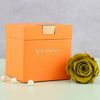 Olive Green Forever Rose in Orange Box: Forever Roses