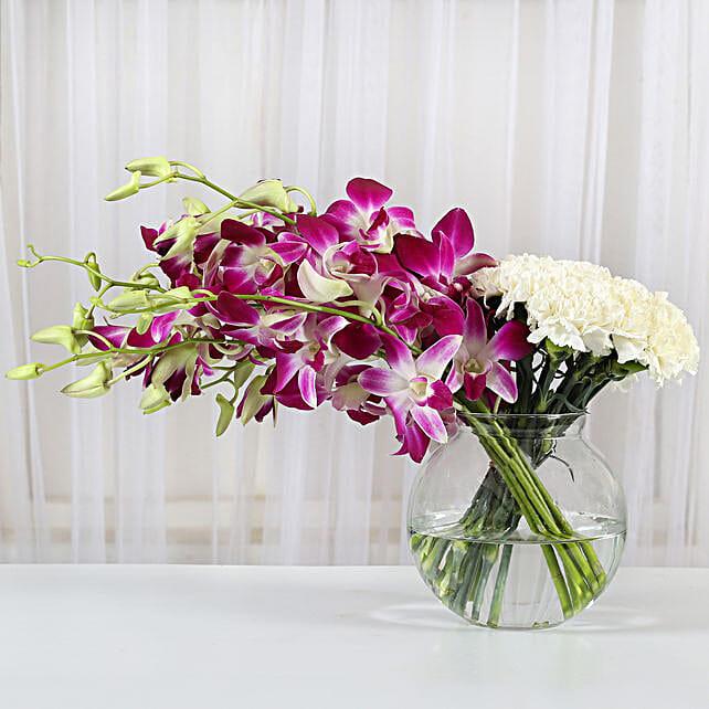 Pristine Grace: Carnations