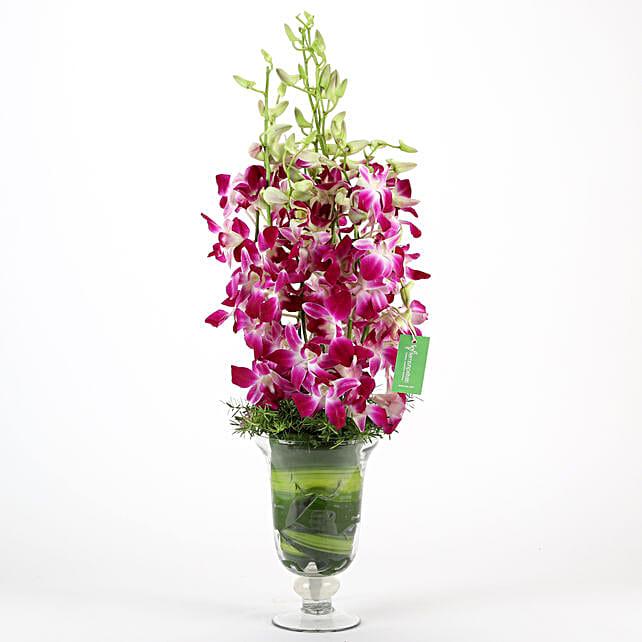 Purple Orchids Vase Arrangement: