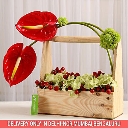 Elegant Anthurium Basket: Send Anthuriums
