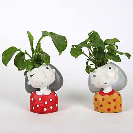 Set of 2 Lively Plants In Raisin pots: Money Plant