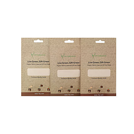Spring Onion Lettuce & Endive Seeds Combo: