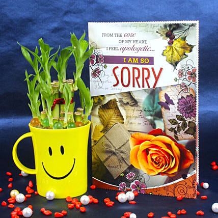 Two Layer Bamboo Plant & Sorry Card: Indoor Plants