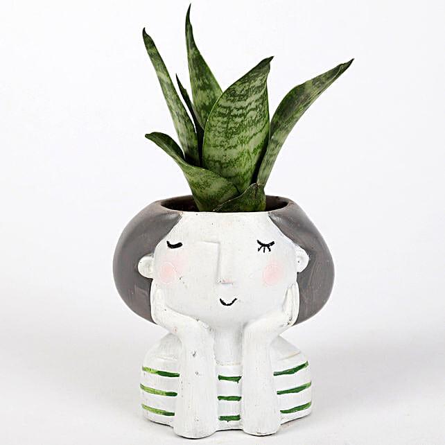 Snakeskin Sansevieria Plant In Raisin Pot: Air Purifying Plants