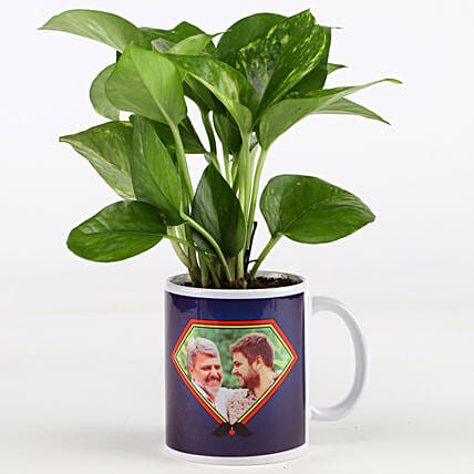 Money Plant In Personalised Mug For Dad: Personalised Pot plants