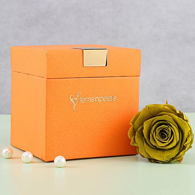 Olive Green Forever Rose in Orange Box: Grandparents Day Flowers