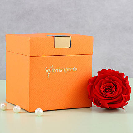 Timeless- Forever Red Rose in Orange Box: Send Flowers to Mahe