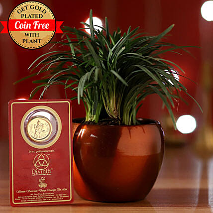China Grass & Free Gold Plated Coin: Gifts Delivery in Manesar