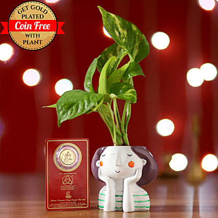 Money Plant & Free Gold Plated Coin: Gift to Manesar