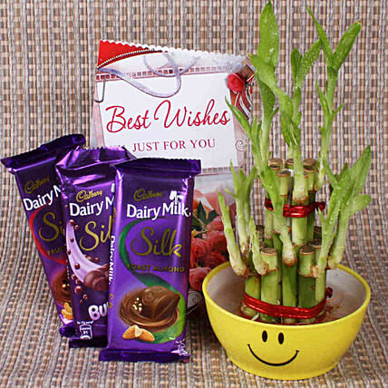 Best Wishes With Lucky Bamboo: Ornamental Plants