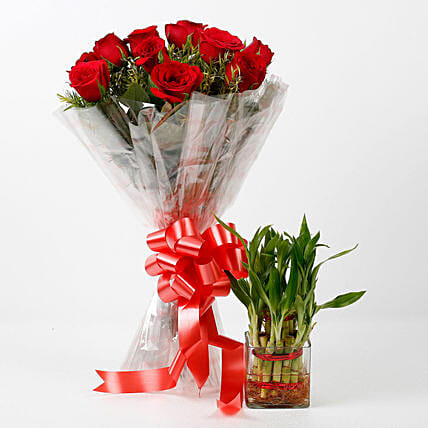 Red Roses & Two Layer Lucky Bamboo Combo: Combo Gifts