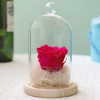 Hot Pink Forever Rose in Glass Dome: Forever Roses