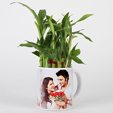 Lucky Bamboo in Personalised White Mug: Plants for Wife