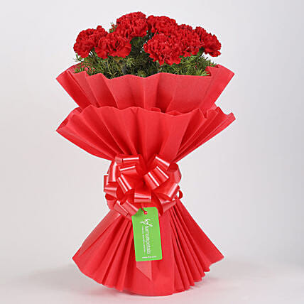 Vibrant 20 Red Carnations Bouquet: Red Flowers