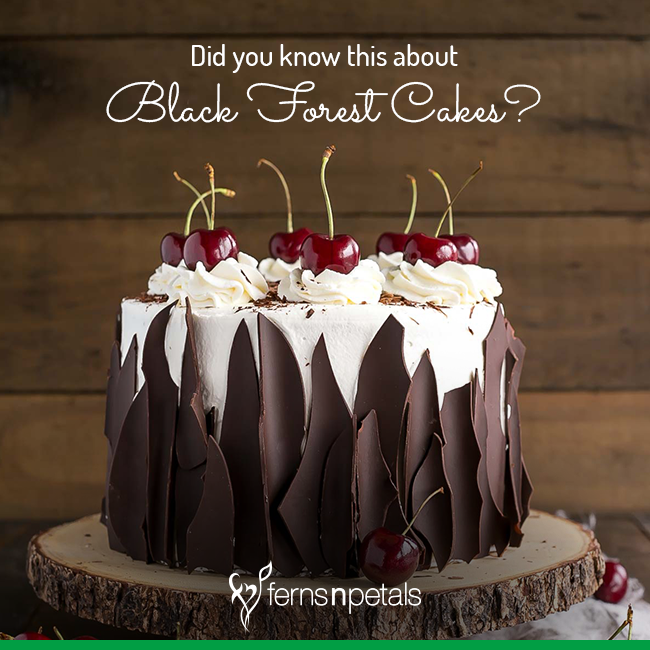 Did You Know This About Black Forest Cakes - Ferns N Petals
