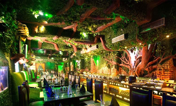 jungle-dinner-rajouri-garden