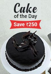 chocolaty-truffle-cake