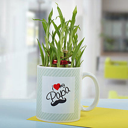 Elegant 2 Layer Plant Bamboo for Dad In Mug