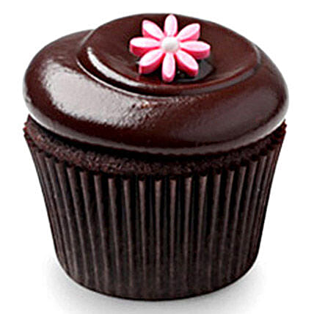 Chocolate Squared cupcake 6