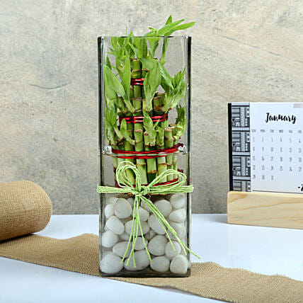Three layer bamboo put in a large round glass vase with white pebbles