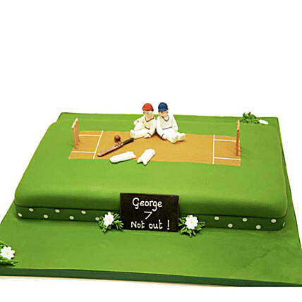 Heavenly Delights Cricket Cake 3kg