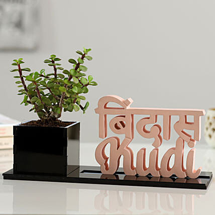 Jade Plant With Bindas Kudi Table Top