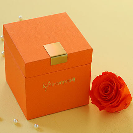 Premium Infinity Rose with Box Online