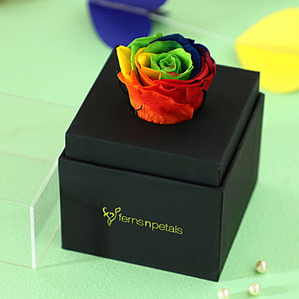 online infinity rose with black box