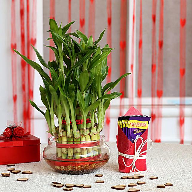 Chocolate N Plant Valentine Combo